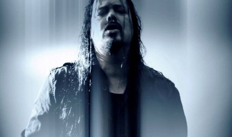 EVERGREY – Distance